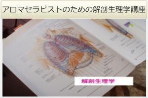 【アロマセラピストのための解剖生理学講座(全3回)】