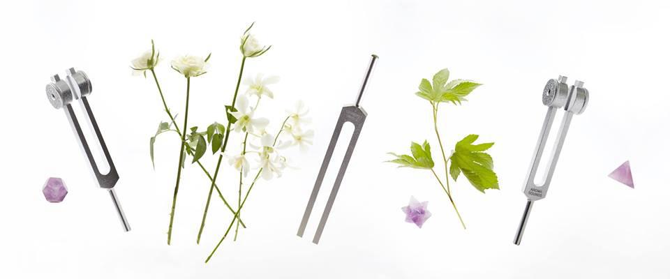 アロマ音叉療法®|一般社団法人日本五感療法協会【JFSTA】